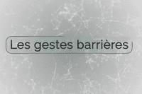Prévention santé, les virus et les humains : les gestes barrières