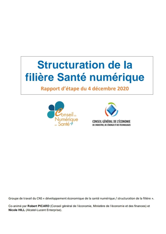 """Rapport du groupe de travail du conseil du Numérique en Santé """"Structuration de la filière santé numérique"""""""
